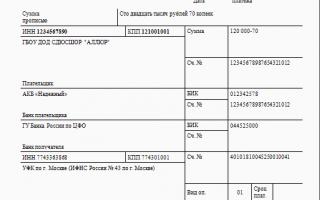КБК 2019: коды бюджетной классификации, таблицы для уплаты налогов, госпошлин, штрафов